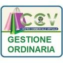 Gestione ordinaria CCV Reti