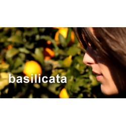 www.saporibasilicata.it