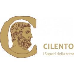 www.saporicilento.it