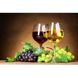 Vendere visibilità per Vini - Enoteche