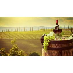 Vini Italiani - Reti Imprese