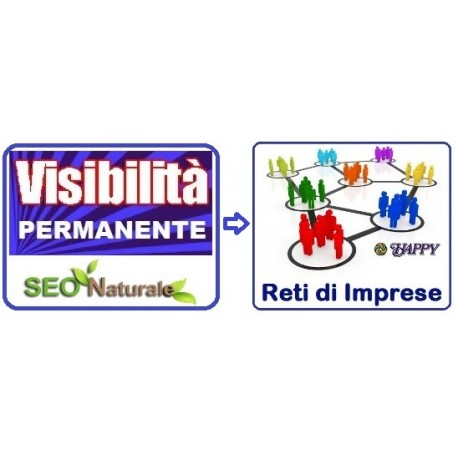 Visibilità Web per Reti di Imprese