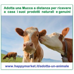 Fattorie che offrono le Mucche in adozione