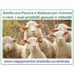 Fattorie che offrono le Pecore in adozione