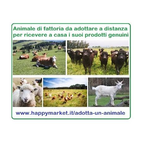 Fattorie che offrono in adozione gli animali da fattoria